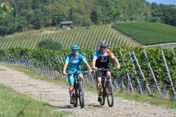 beitune MTB E-MTB E-Bike Kaiserstuhl