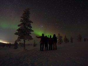 Mit etwas Glück können wir bei der beitune Winterreise nach Lappland tolle Nordlichter bestaunen.