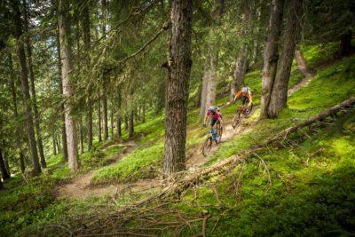 Bei den beitune MTB-Touren im Schwarzwald sind wir zwei Tage lang auf den schönsten Singletrails im Schwarzwald unterwegs