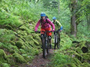 Zahlreiche Trails machen eine Biketour in den Vogesen zu einer tollen Trailtour.