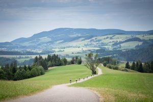 Rennradfahrer auf der Rennradtour im Schwarzwald