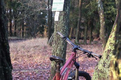 Mit viel Flow und Spaß fahren wir die MTB-Trail Winterstein beim MTB-Trailcamp im Taunus